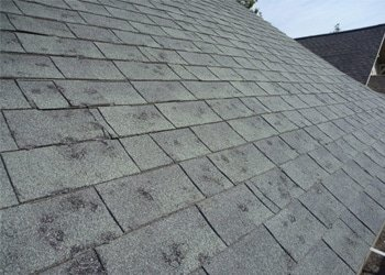 Hail Damaged roof waiting on insurance claim in Colorado Springs